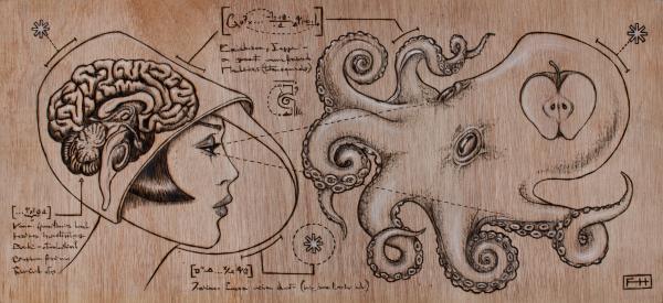 https://mysterybabalon.files.wordpress.com/2011/01/lady-brain-apple-squid-fay-helfer.jpg
