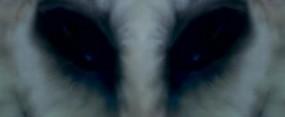 https://mysterybabalon.files.wordpress.com/2011/03/owl.jpg