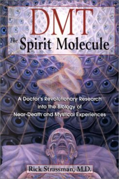 https://mysterybabalon.files.wordpress.com/2012/02/bc_dmt_spirit_molecule_0.jpg